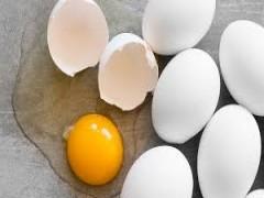معاون وزیر کشاورزی: واردات تخم مرغ بیشتر می شود گرانی نخواهیم داشت