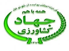 نماینده ولی فقیه در وزارت جهاد کشاورزی منصوب شد