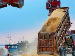 سقف قیمت واردات نهادههای دامی به واردکنندگان ابلاغ شد