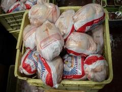 واردات ۱۲۰ هزارتن مرغ به کشور تصویب شد/کاهش قیمت در راه است؟