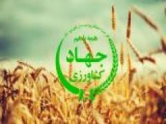 کد های تعیین وزیر جهاد کشاورزی در دولت بعدی کدهایی که اگر دقت کنید وزیر آینده را همین امروز بشما می شناساند