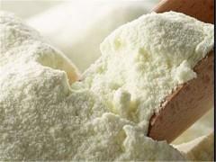 ١.۵ میلیون یورو مواد اولیه شیرخشک در گمرکات در حال فساد است!