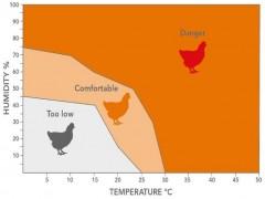 مدیریت پرورش در آب و هوای گرم
