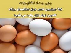۹۵ میلیون تخم مرغ نطفه دار برای تامین نیاز بازار وارد شد